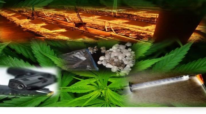 Metro Vice, Narcotics, & Intelligence Division
